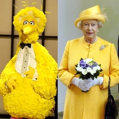 Big bird vs Queen of england