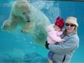 Polar bear sees a baby