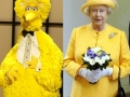 Big bird vs Queen of england
