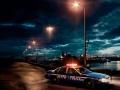 Police dash lights