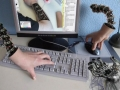 Robo hand