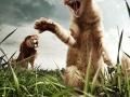 Cat vs Lion
